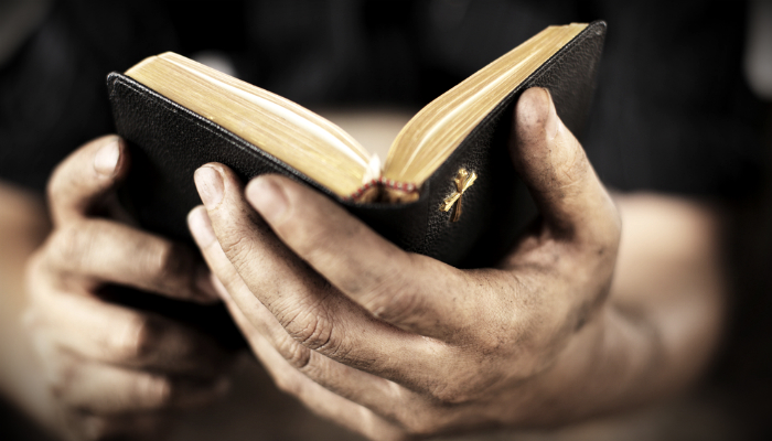 readingscriptureintradition