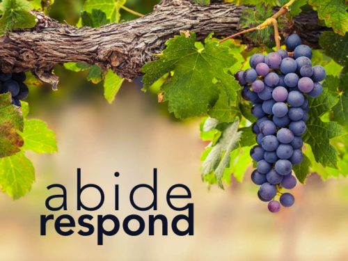 ABIDE & RESPOND: Truthful Space