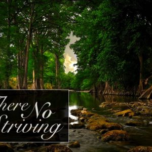 There is No Striving
