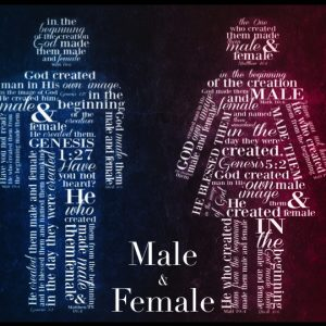 MALE & FEMALE: He Created Them