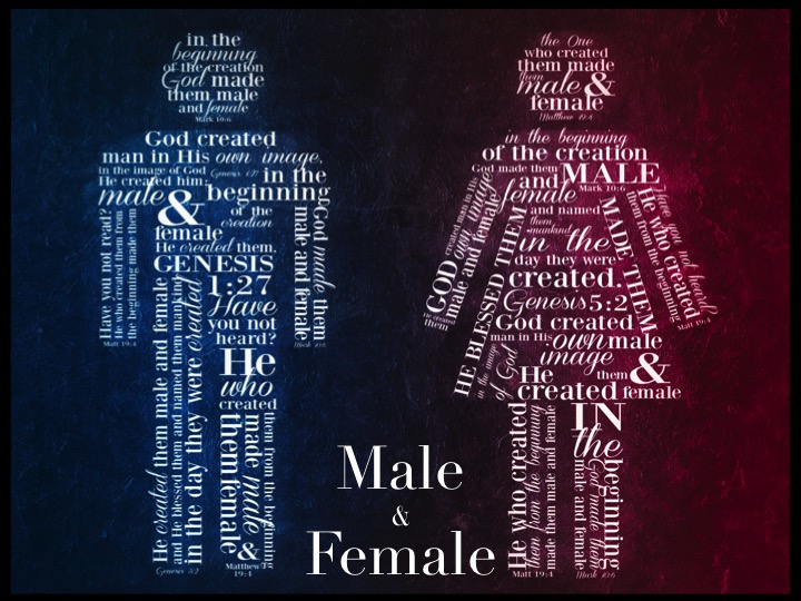 He Made Them Male and Female