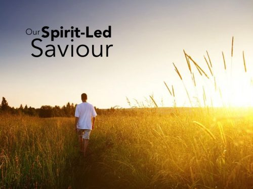 OUR SPIRIT-LED SAVIOUR: A Life of Fruit